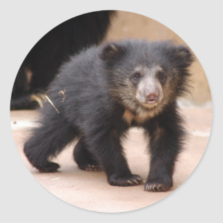 sloth-cub10x10 round sticker