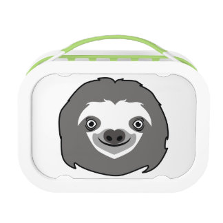 Sloth Face Lunch Box