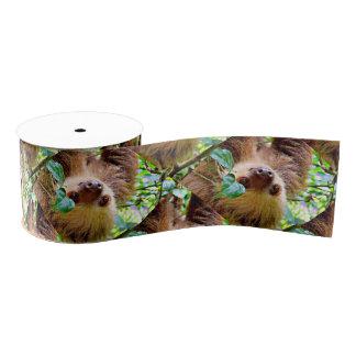 Sloth Grosgrain Ribbon