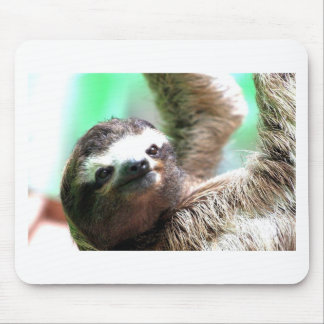 Sloth Mousepad