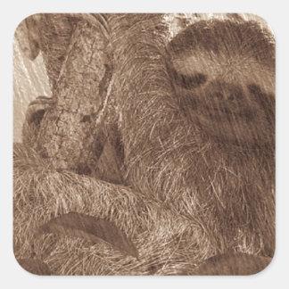 sloth pencil sketch square sticker