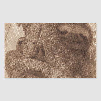 sloth pencil sketch rectangular sticker