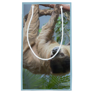 Sloth Photo Gift Bag