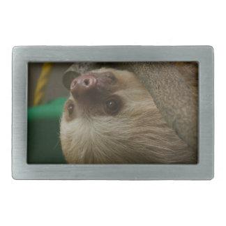 Sloth Rectangular Belt Buckles
