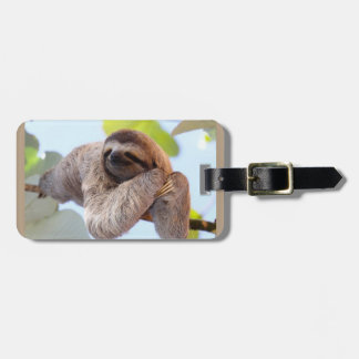 Sloth resting on tree branch luggage tag