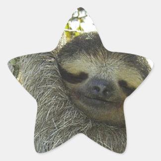 Sloth round mask star stickers