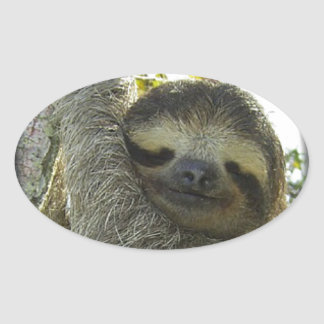 Sloth round mask oval stickers