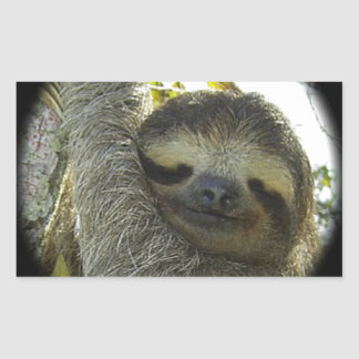 Sloth round mask rectangle stickers