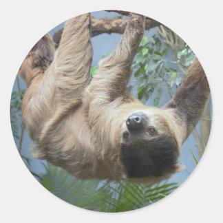 Sloth Round Sticker