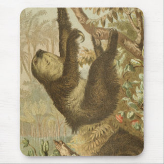 Sloths are Super Mouse Pad