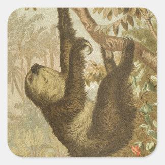 Sloths are Super Square Sticker