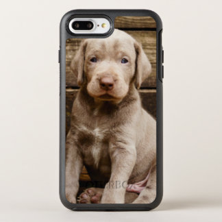 Slovakian Rough Haired Pointer Puppies OtterBox Symmetry iPhone 7 Plus Case
