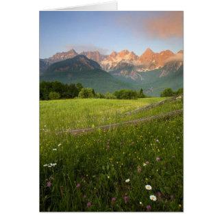 Slovenia Meadow Card
