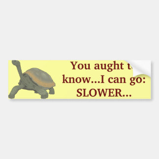 SLOW DOWN? BUMPER STICKER