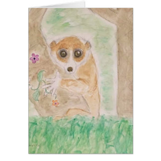 slow loris card