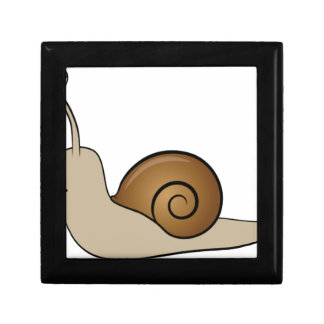 slow snail small square gift box