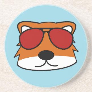 Sly Fox Coaster