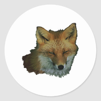 Sly Little One Classic Round Sticker