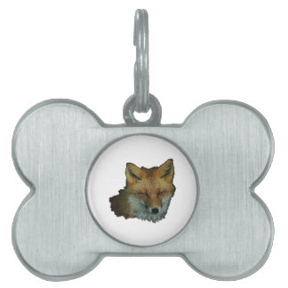 Sly Little One Pet Name Tag