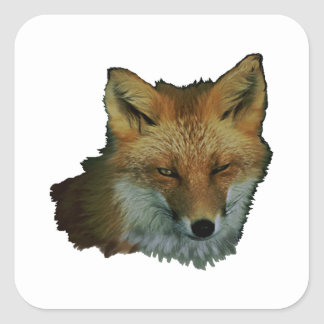 Sly Little One Square Sticker
