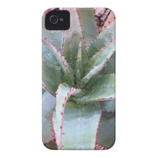 Small agave Case-Mate iPhone 4 case