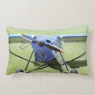 Small Airplane Parked On The Grass Lumbar Cushion