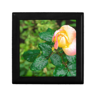 Small autumn rose with droplets small square gift box