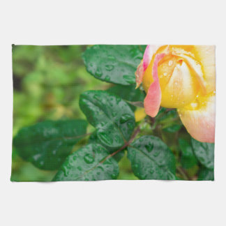 Small autumn rose with droplets tea towel