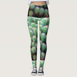 small barrel cactus green leggings