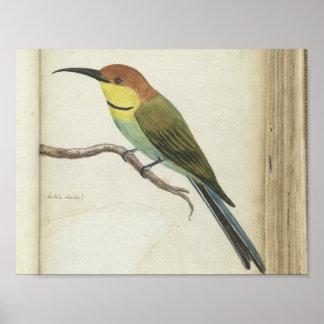 Small bird on branch, Jan Brandes, 1785 Poster