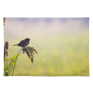 Small bird on grass placemat