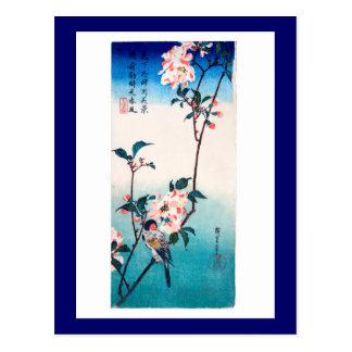 Small Bird On Sakura Branch 桜 枝にとまる小鳥 Postcards