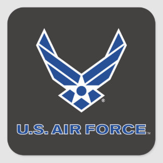 Small Blue Air Force Logo & Name Square Sticker