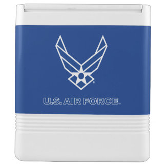 Small Blue Air Force Logo with Outline Esky