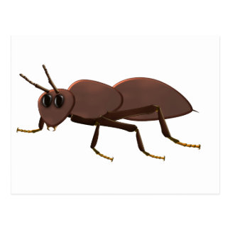 Small brown ant postcard