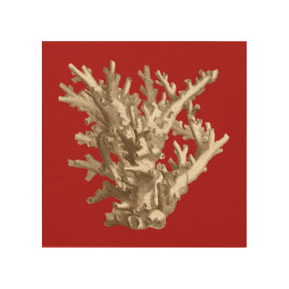 Small Coral in Red Wood Print