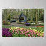 Small cottage flower shop, Keukenhof Gardens,