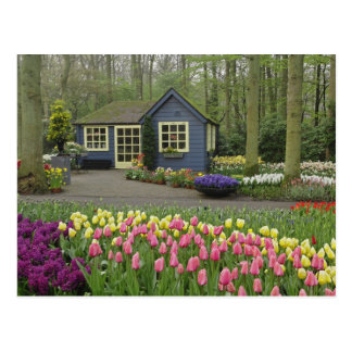 Small cottage flower shop, Keukenhof Gardens, Postcard