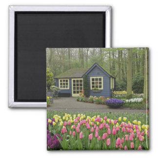 Small cottage flower shop, Keukenhof Gardens, Square Magnet