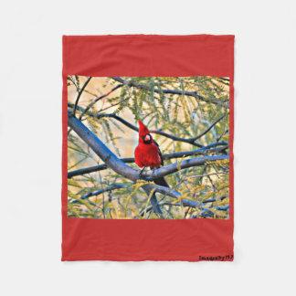 Small Fleece Blanket - Arizona Cardinal