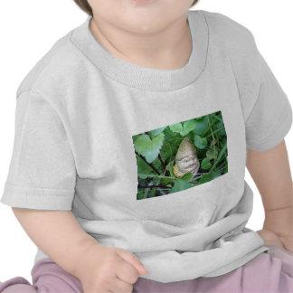 Small Garden Gnome Shirt