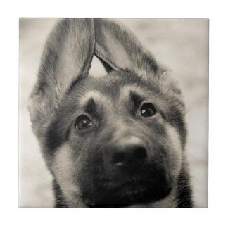 Small german shepherd puppy tile