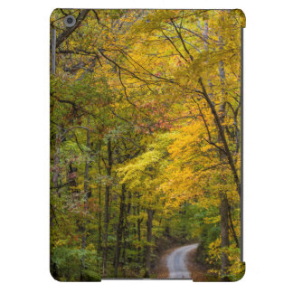 Small Gravel Road Lined With Autumn Color iPad Air Cases