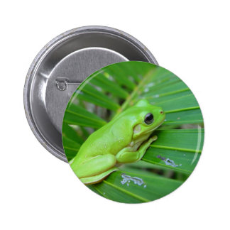Small Green Frog 6 Cm Round Badge