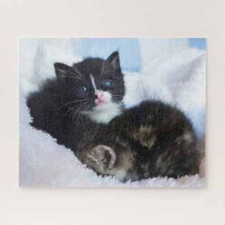 Small kittens snuggling in the blankets jigsaw puzzle