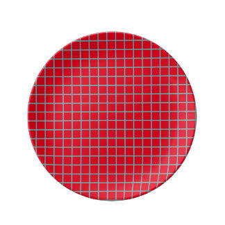 Small Light Teal Lattice Stripes on Bright Red Plate