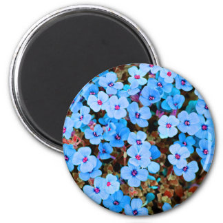 Small Lite Blue Flowers Magnet