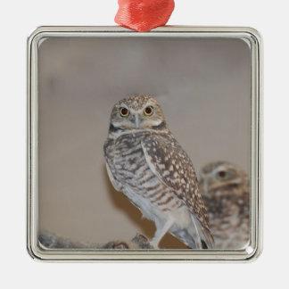 Small Owl Christmas Ornaments