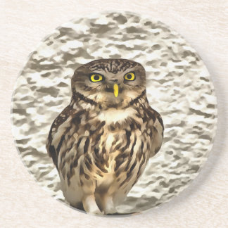 Small Owl In Camouflage Beverage Coasters