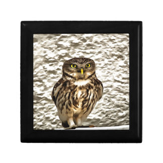 Small Owl In Camouflage Gift Box